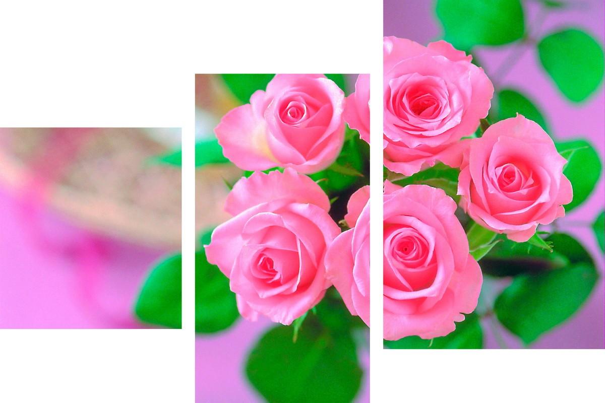 Розы для яркой жизни