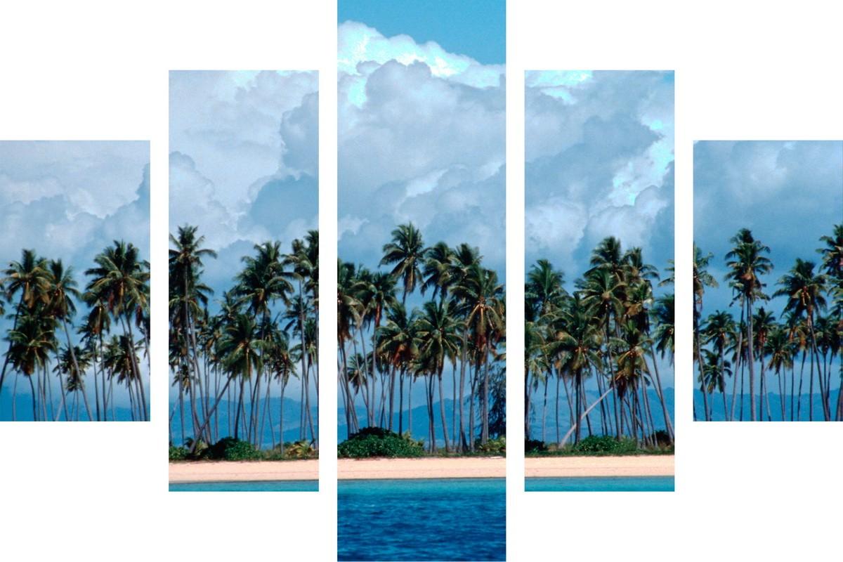 Берег, пальмы и шум океана