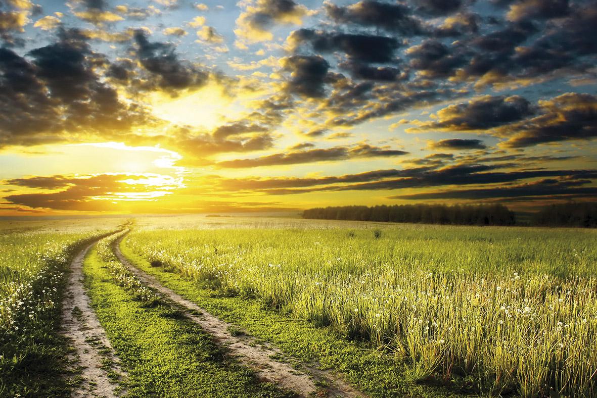 Закат за полями